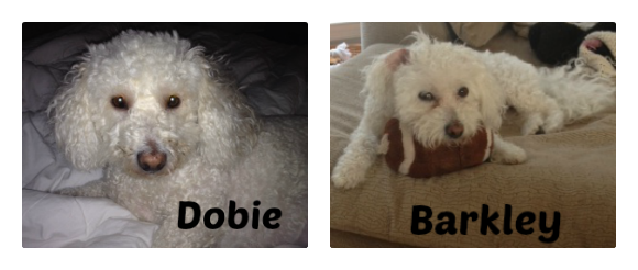 Barkely Dobie