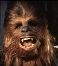 He's laughing because his back hair was in my freezer. Not funny, Chewy. Not. Funny.