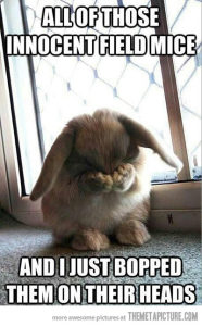 funny-cute-bunny-covering-face